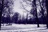 A spasso nella neve, gennaio 2009. Giardini Reali